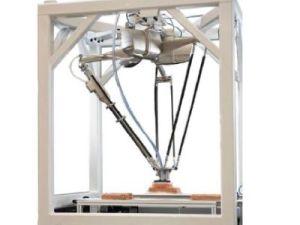 Fanuc Delta Robot